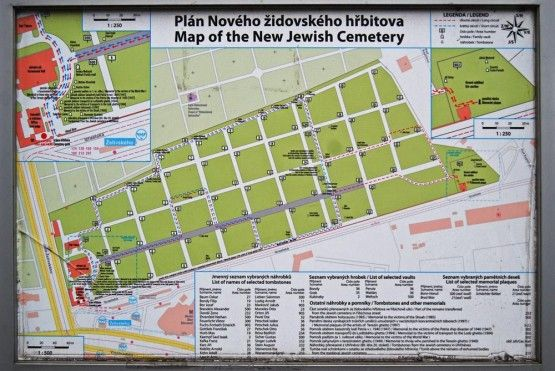 A plan of New Jewish Cemetery in Zizkov