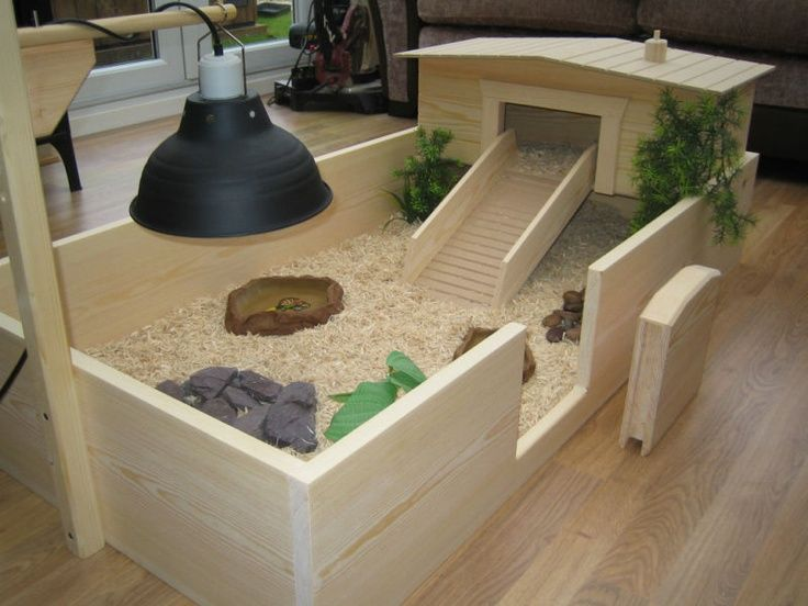 tortoise enclosure indoor - Google Search
