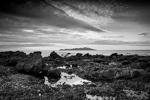 Kapiti island bw