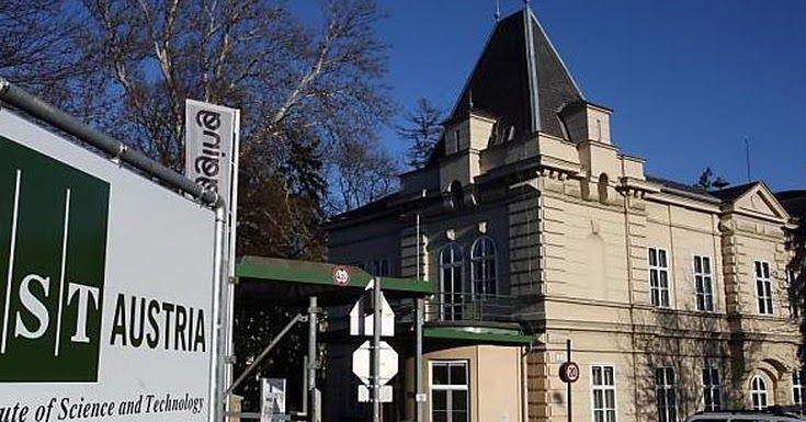 Αποκαλύφθηκαν απάνθρωπα βασανιστήρια σε ψυχιατρική κλινική στην Αυστρία