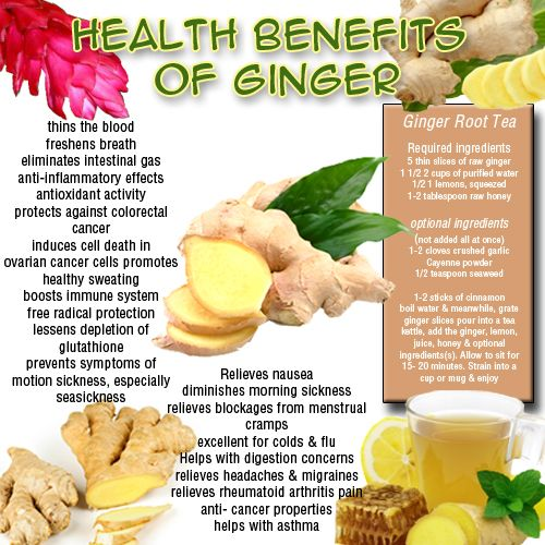 Ginger - Video On This Amazing Disease Fighting Plant - Underground Health