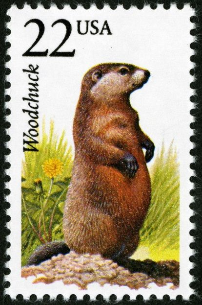"""Happy Groundhog Day from World Stamp Show-NY 2016! Click """"Like"""" if you hope Punxsatawney Phil doesn't see his shadow and we get an early spring."""