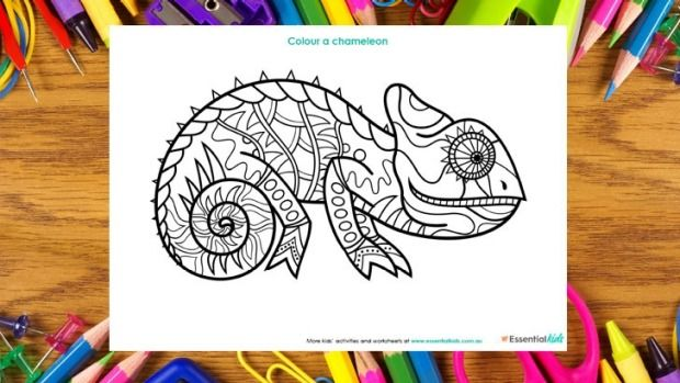Chameleon colouring page http://www.essentialkids.com.au/activities/colouring-pages/chameleon-colouring-page-20151016-gkaywb