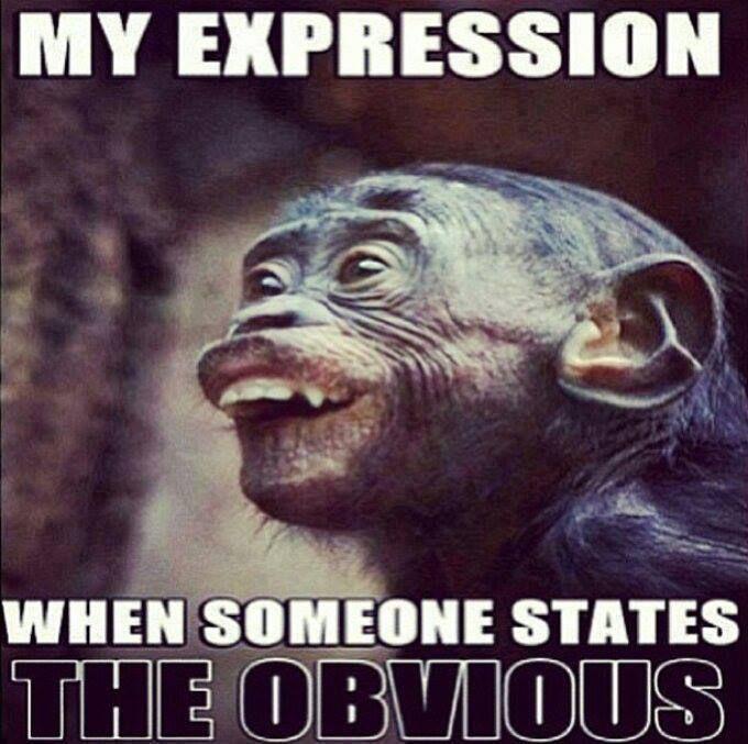 Bahahahahaha!!! So true though!