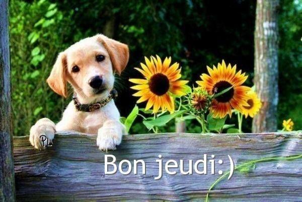 happy saint valentine in french