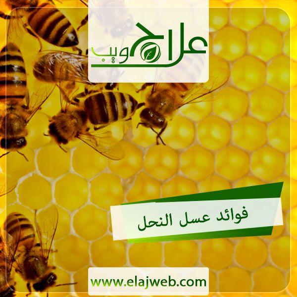 فوائد العسل علاج ويب Poster Movie Posters