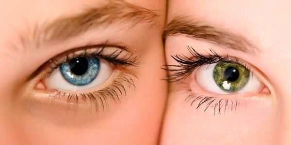 Supaya mata kita sehat, ada caranya lho...