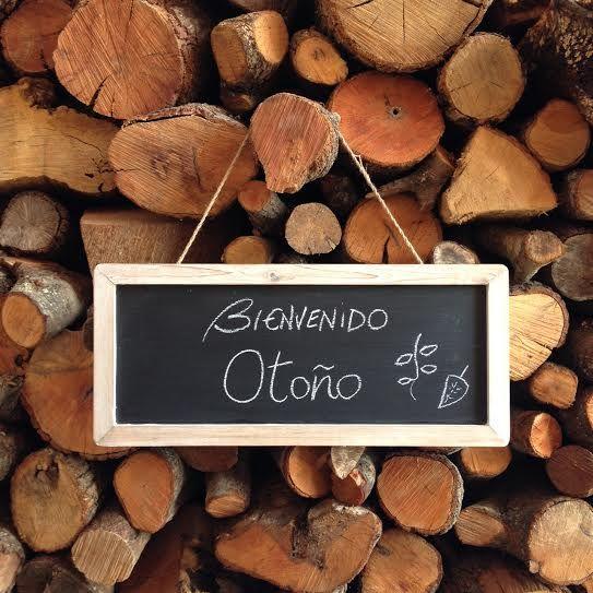 bienvenido otoño, welcome autumn, wood, troncos, chalkboard
