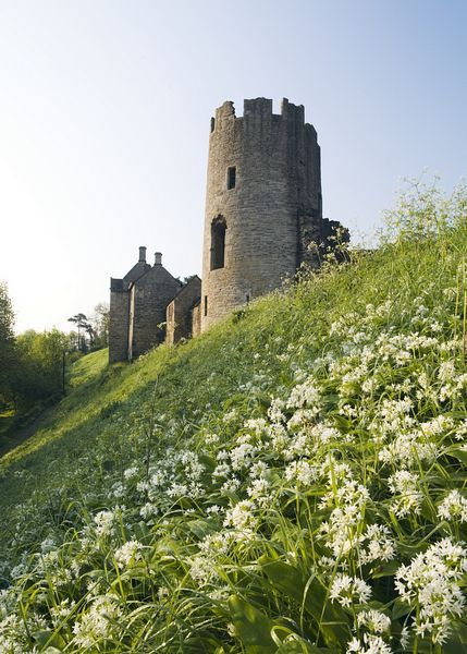 Farleigh Hungerford Castle, Somerset on http://www.aboutbritain.com/FarleighHungerfordCastle.htm