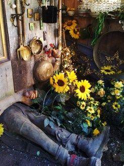Garten-im-Kutschenmuseum