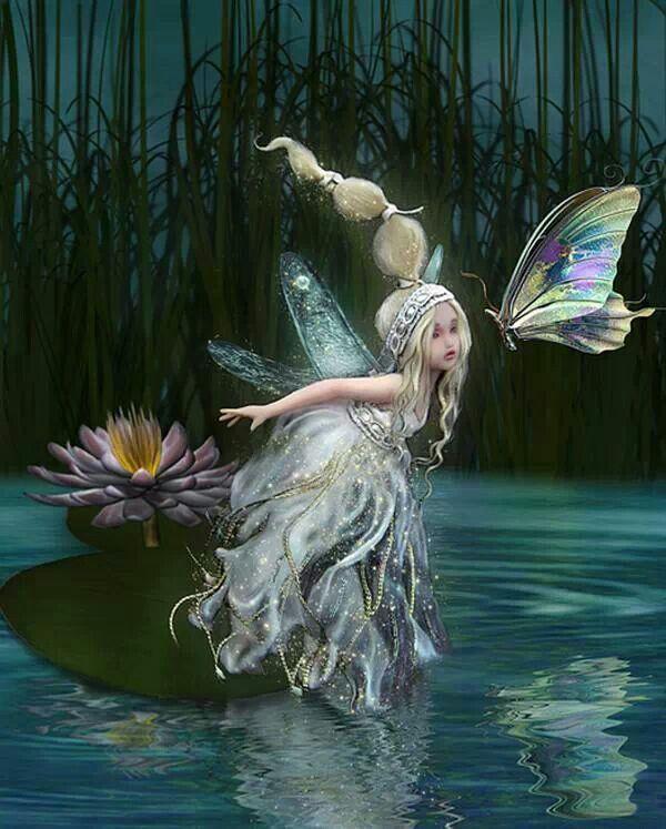 Fairy Seg
