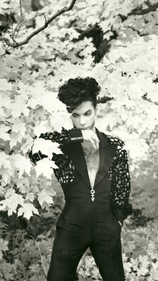 Beautiful man! He was absolutely gorgeous! R.I.P. Prince Rogers Nelson the greatest musician to ever walk this planet. This world was made a better place because, you were here. Now you are gone and life isn't as bright as it once was.