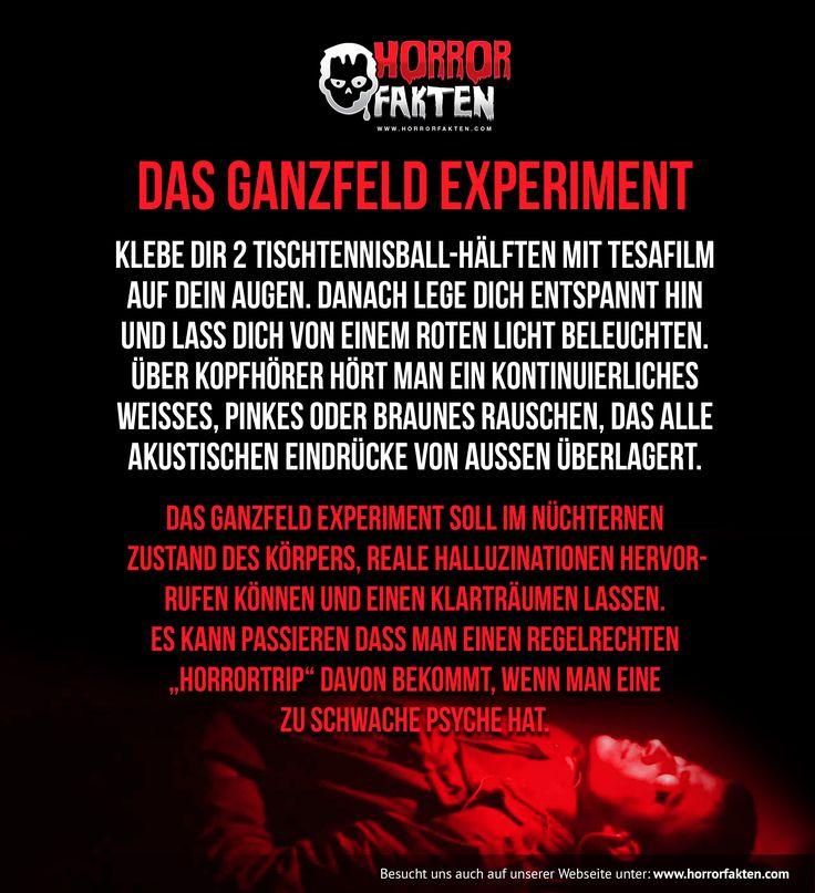 Das Ganzfeld Experiment nachmachen.  #ganzfeld #anleitung #tutorial #nachmachen #horrorfakten