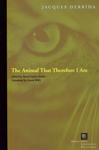 The Animal That Therefore I Am (Perspectives in Continental Philosophy)