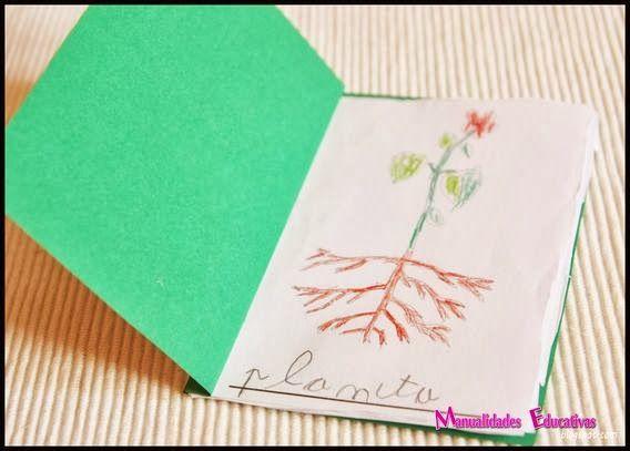 Botánica Montessori - Mini libro Nomenclatura de las partes de la planta - Imprimible Gratis - Creciendo con Montessori
