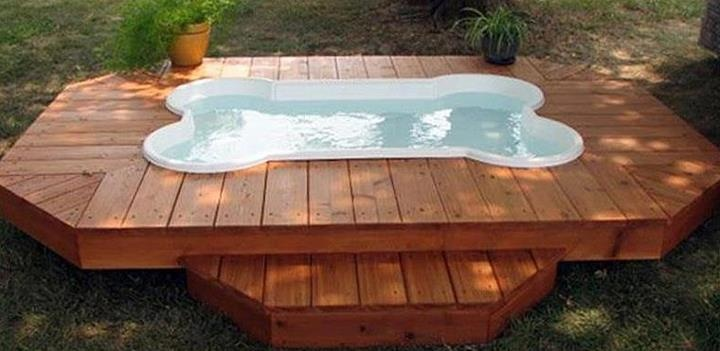 Bone shaped pool my dogs want this the best dog for Garden pool for dogs