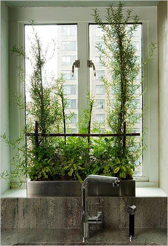 Kitchen herb garden - that's really bringing the outdoors in!