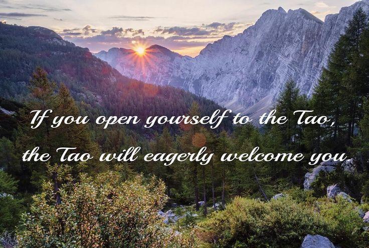 Tao Te Ching Verse 23 #tao #taoteching #taoquotes #daodejing