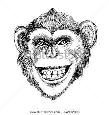 Image result for hand drawn monkey