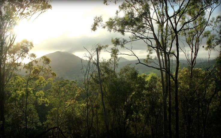 #365Toowoomba: Tuesday, January 6: Bush Dawn