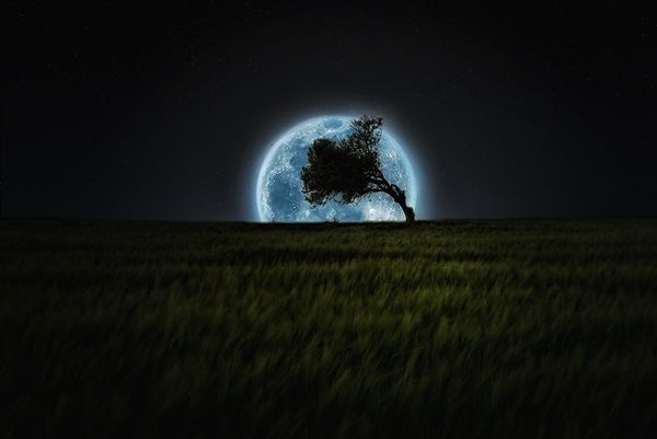 Charming Moonlight Photography Ideas and Tips (6)