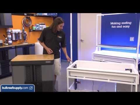 How To: Set Up a Frag Tank with Sump for Stony Corals -- EP 3: Coral Pro...