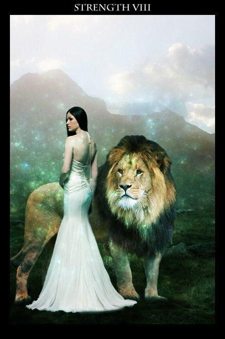 Leo tarot - I had the strangest dream last night about a lion in my house ... it was one of those dreams that lingers ....