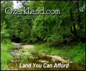 1000 ideas about how to buy land on pinterest buy land for Where to buy cheap land for homesteading