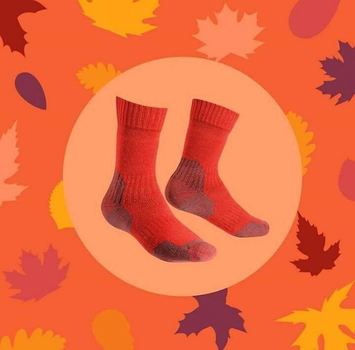 #fall  #autumncolors #CALZEGM