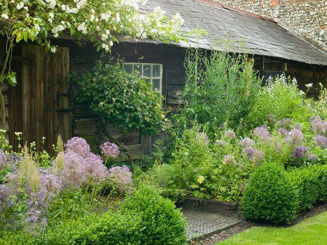 Allium hollandicum, a lovely lavender ornamental onion, adds both height and color to this country garden.: Gardens Ideas, Rustic Gardens, Cottages Gardens, Garden Design, Little Cabin, Green Gardens, Rustic Cottages, Small Spaces, Small Gardens Design