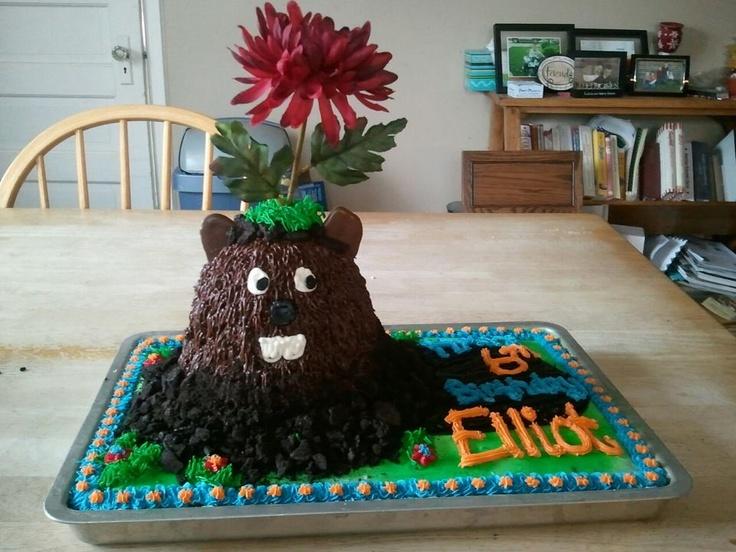 Best February Groundhog Day Birthday Cake EVER! Very impressive ...