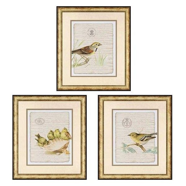 21 Best Feathered Friends Wall Decor Images On Pinterest Room Wall Decor Wall Decals And Wall