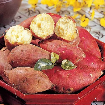 Sweet Potato <3