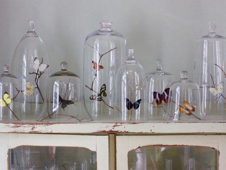 un arrangement vintage de papillons décoratifs sous des cloches en verre