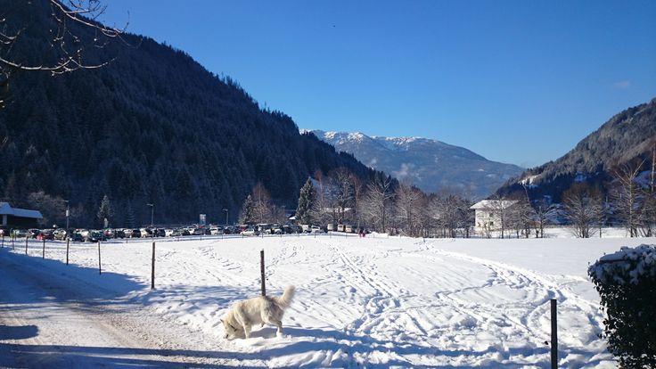 Blick vom Genusshotel Almrausch**** - wunderschöne winterliche Landschaft in Bad Kleinkirchheim, Kärnten. www.almrausch.co.at
