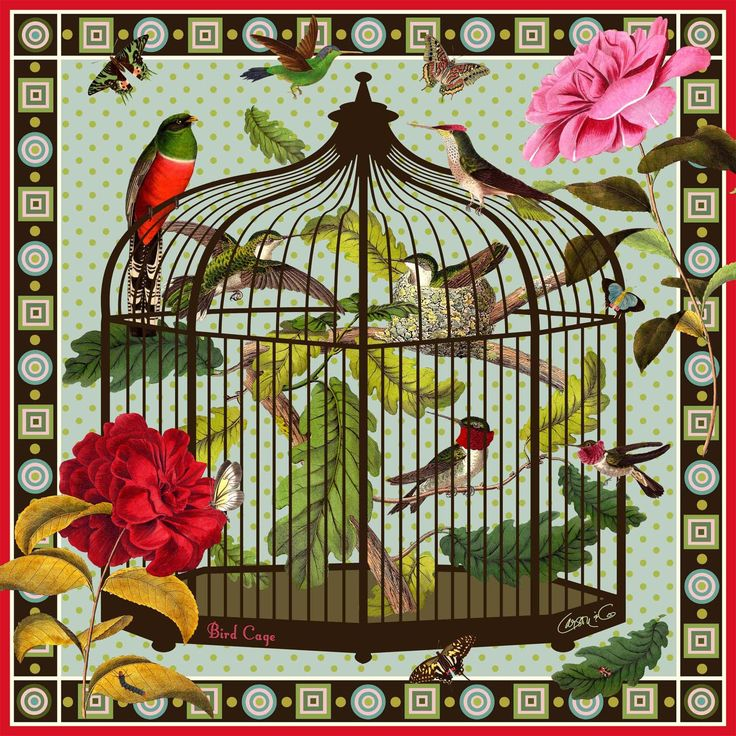 Bird Cage: Designed by designer from USA, Susan Carson.  The scarf is made of 100% Silk Charmeuse, one of the luxurious types of silk.  Susan's design is about nature and color. Her design is inspired by gorgeous images from the 18-19th century.  Susan has the ability to mix prints together between beautiful botanicals on exciting background colors. As a result, this lovely scarf enhances your complexion and your wardrobe, as well as creating a pretty, chic & timeless look. #Silk #Scarf