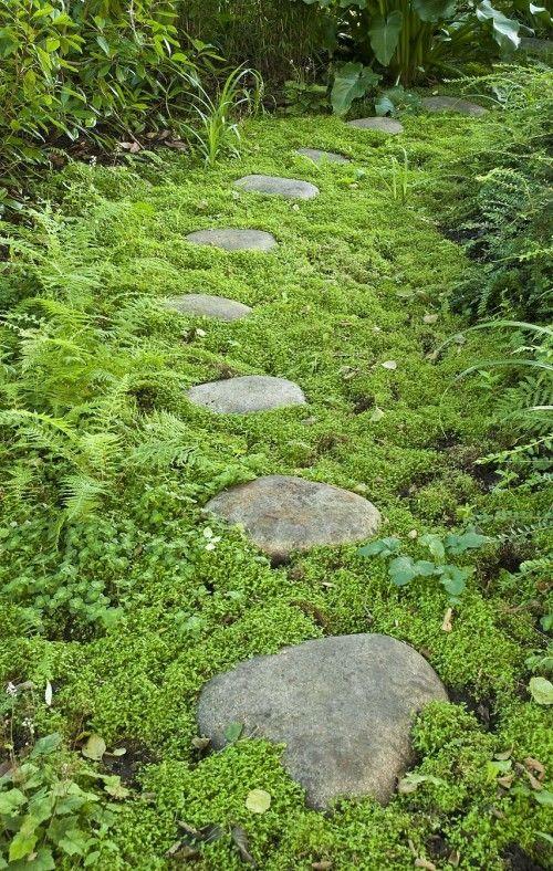 Recopilación de caminos en el jardín: un paseo por el Edén