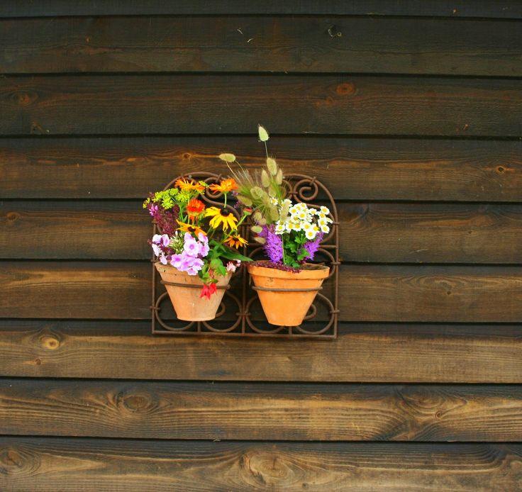 Flowers in Brick House Farm