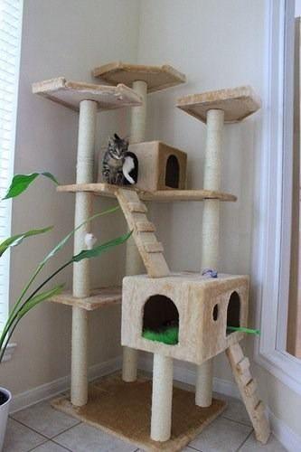 Las 25 mejores ideas sobre rbol para gato en pinterest - Casas para gatos de madera ...