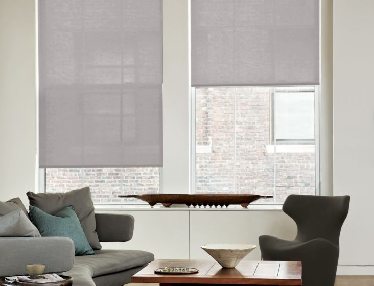 Beautiful Classic Roller Shades Idea - Awesome types of blinds and shades Inspirational