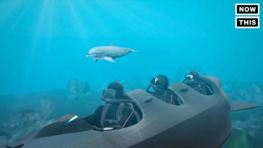 This submersible will up your diving game #news #alternativenews