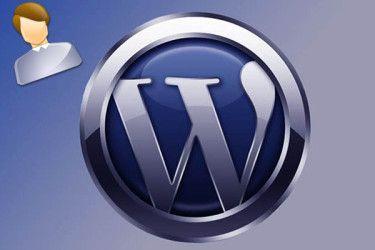 Выводим информацию об авторе записи Wordpress
