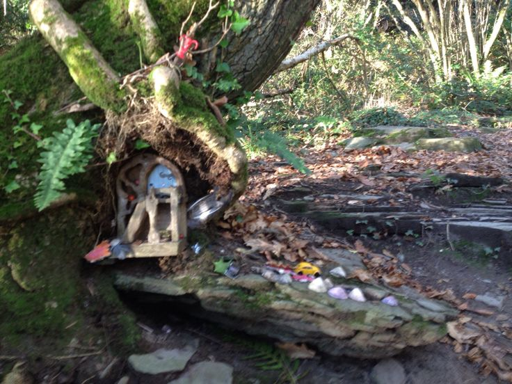 Fairy Door Love #WestCork #FriendsDayOut