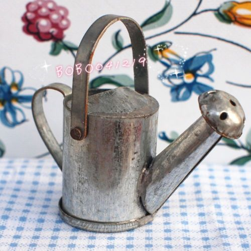 Watering can eBay