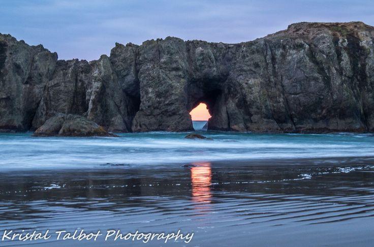 Elephant Rock Bandon Oregon
