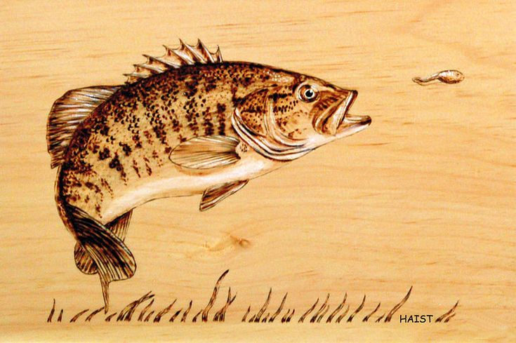 canadian Art of pyrography | Small Mouth Bass Pyrography