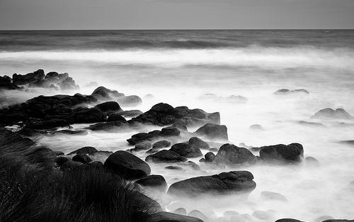 Whale-Bay-Raglan-new-zealand