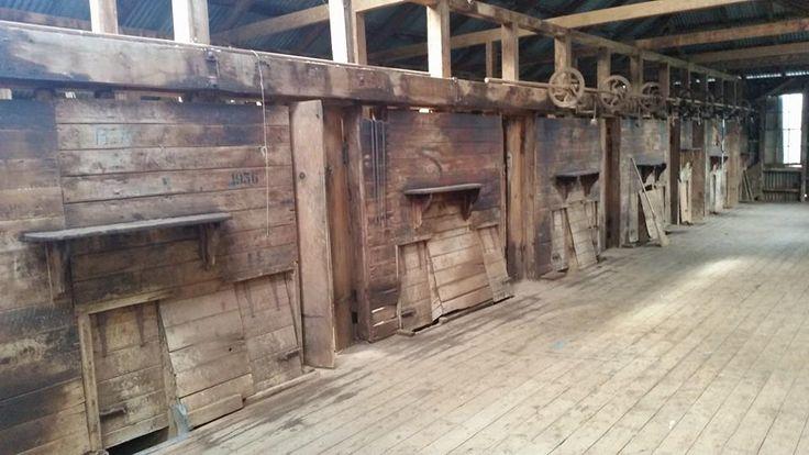 the shed .Old Errowanbang Woolshed, Australia.