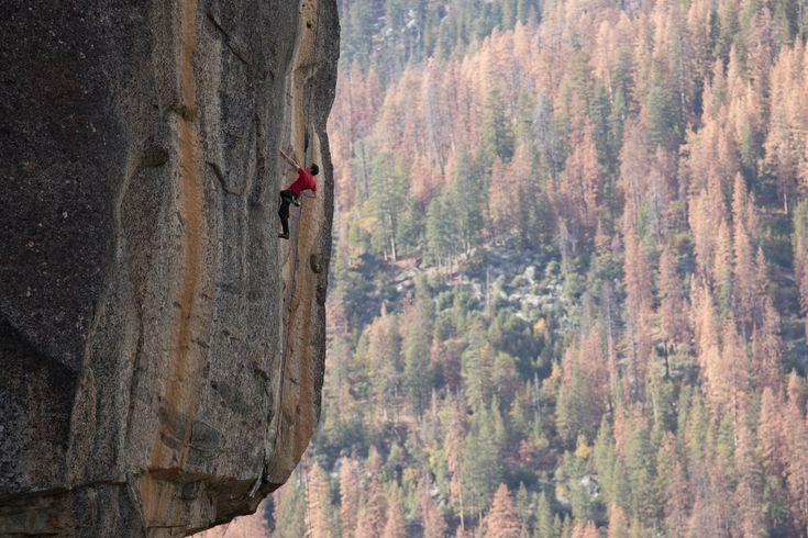 Picture of Alex Honnold climbing in Rostrum's Excellent Adventure in Yosemite