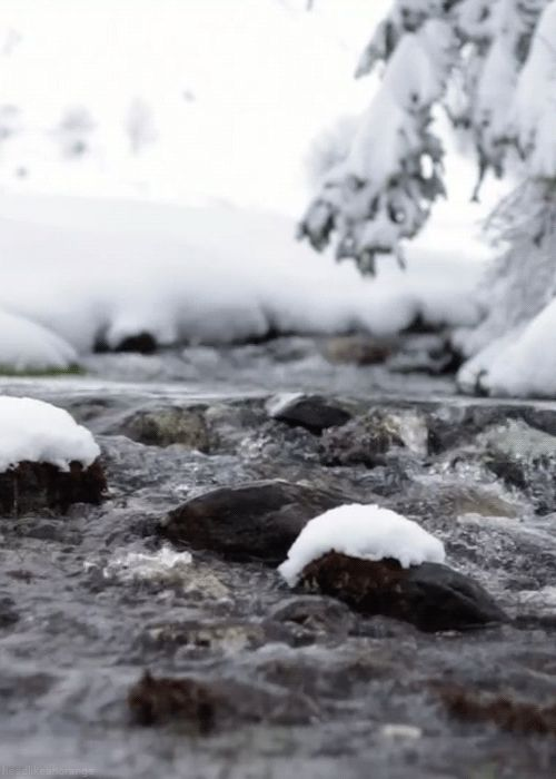 You could be feeling the unique crispness of a winter day.   10 Nature GIFs To Make You Resent Being At The Office